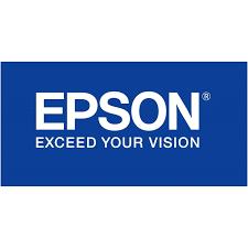 CARTUCHO EPSON T090120N