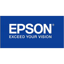 CARTUCHO EPSON T133320M